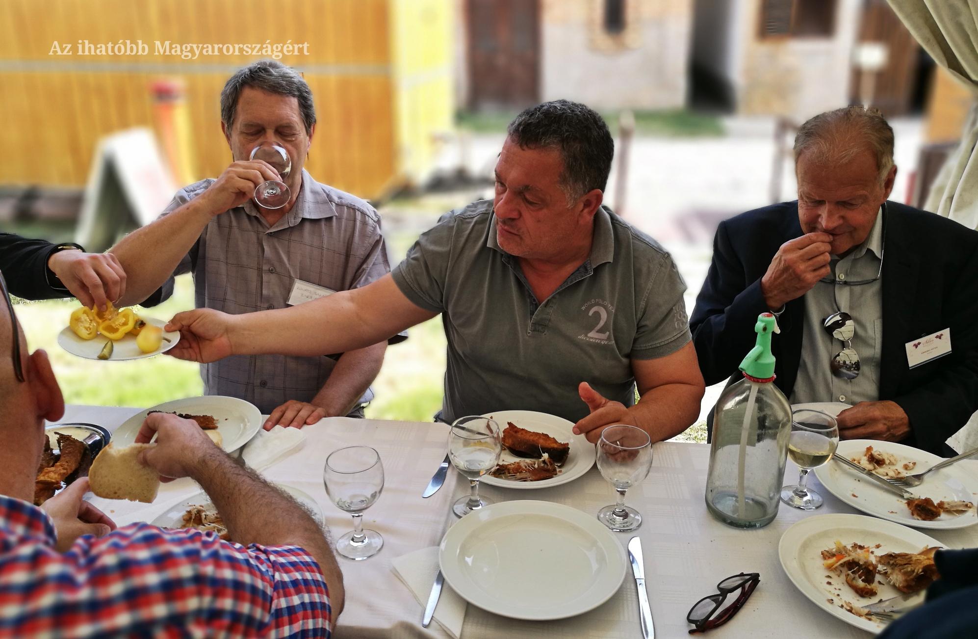 Középen, Kovács Sándor, Fabro Pincészet, a legjobb Paksi Siller készítője