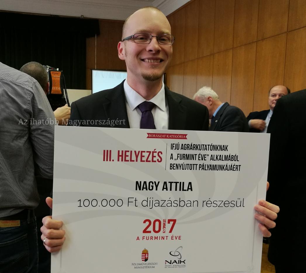 Nagy Attila