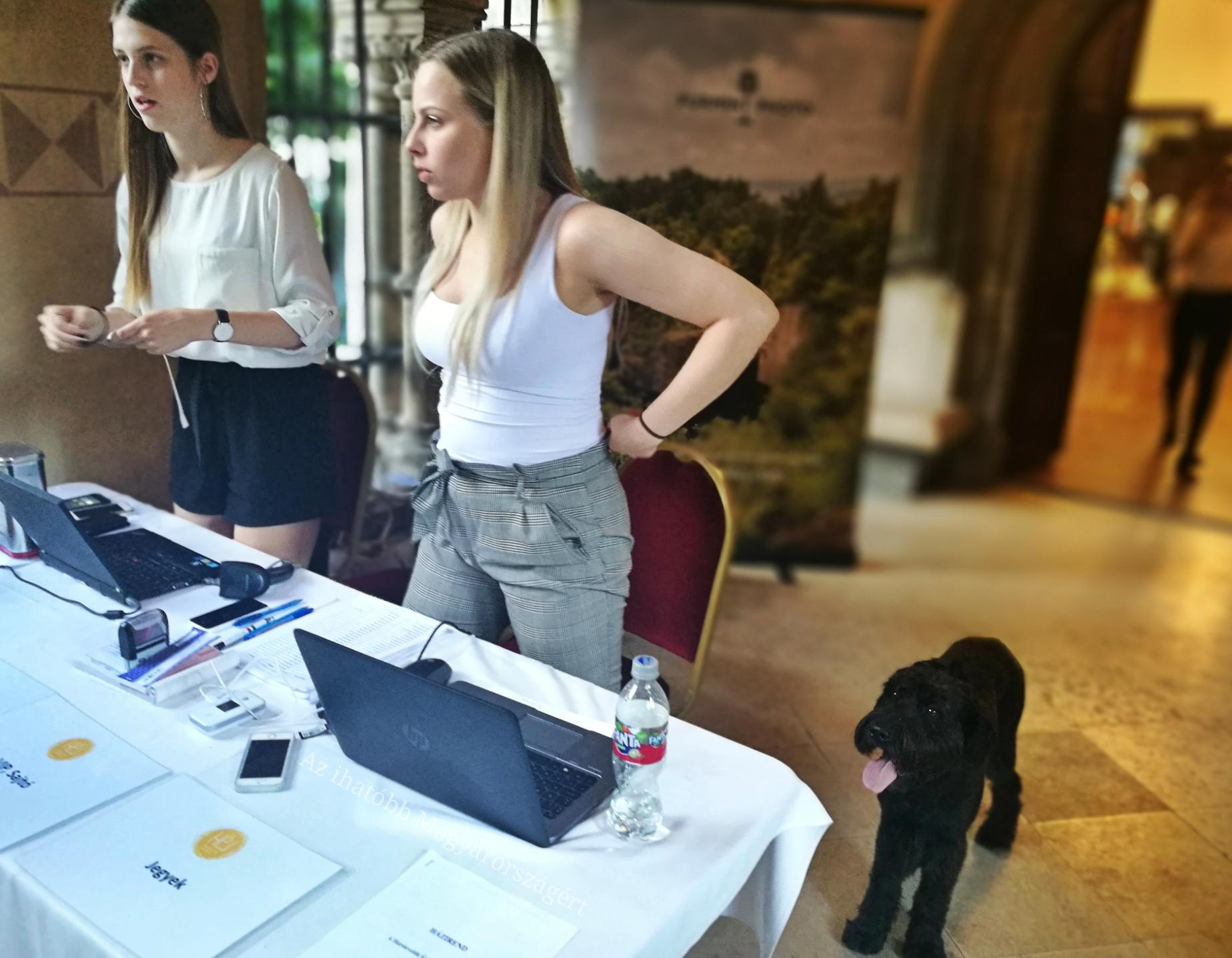 Lányok, kutya, ember, regisztráció
