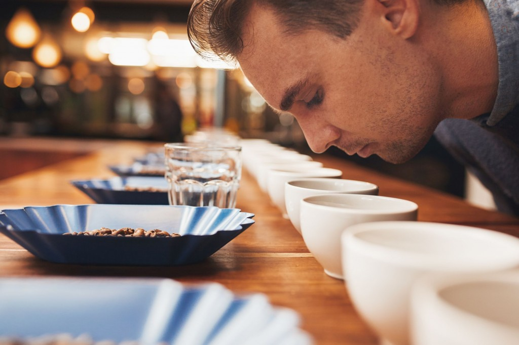 Casucasian man leaning over a wooden counter set with neat rows of containers with a variety of coffee beans, water glasses and coffee cups, smelling the fresh aroma of ground coffee
