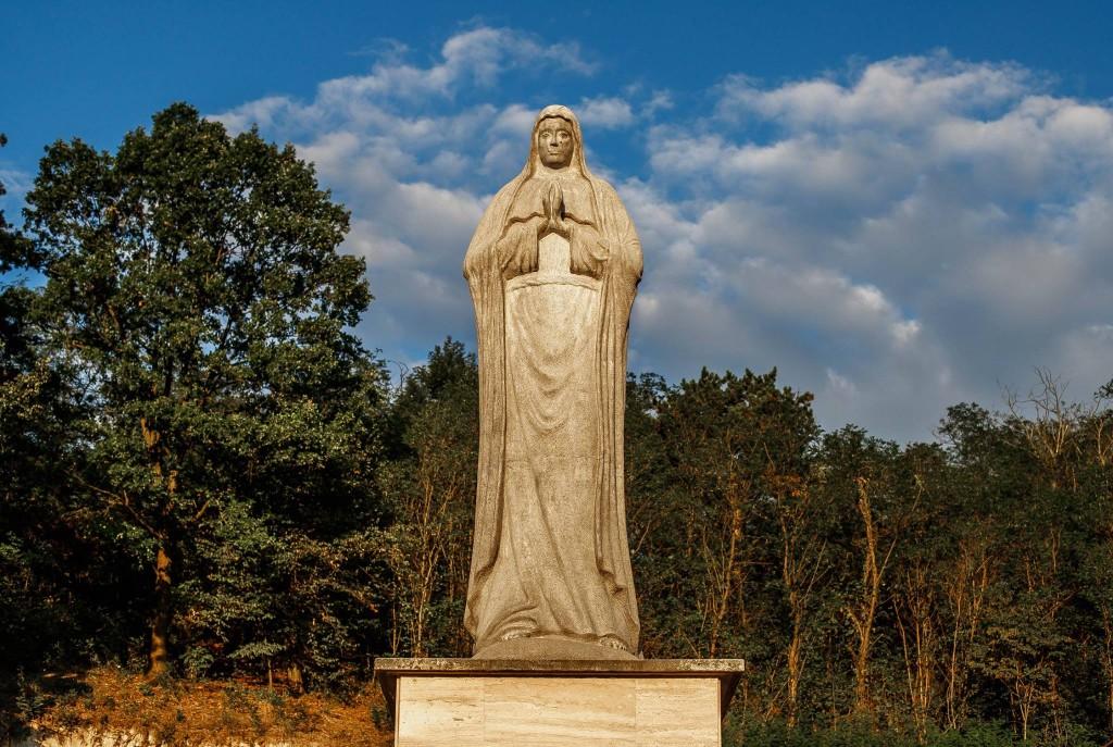 St. Andrea Szőlőbirtok és Pincészet (facebook)